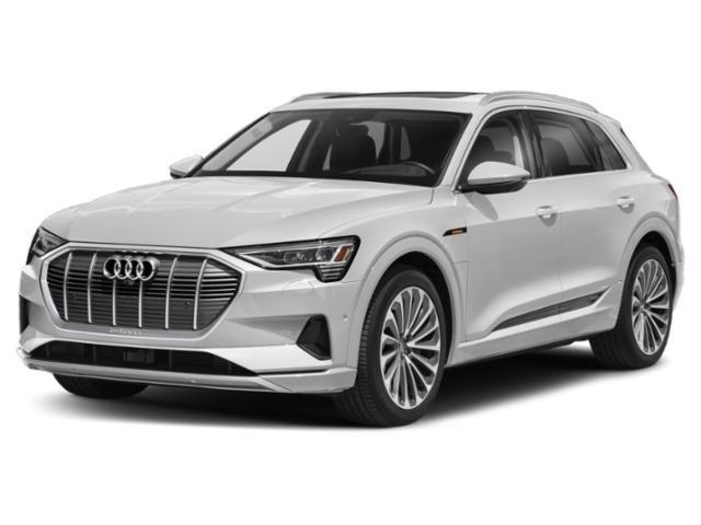 2022 Audi e-tron Rochester MN